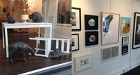 Jeffrey Meier Gallery