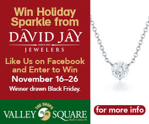 Win Holiday Sparkle and Gifts Galore from your favorite Shops at Valley Square stores and restaurants. There are 3 weeks of prizes and gift cards. Like us on Facebook between November 16th and December 16th and you will be entered to win. Winners will be drawn on November 27th, and December 3rd, 10th  and 17th.  Over 35 great Shops restaurants and Services, including: Ulta Beauty, DSW, Eastern Mountain Sports, Loft- Banana Republic, Jos. A. Bank, Victoria's Secret, Yankee Candle, Gymboree, Bath & Body Works, Soma, Carmel Kitchen & Wine Bar, Chipotle, Panera, PF Changs, Ted's Montana Grill, The Melting Pot, Yogurtland, Great Clips, and Bar Louie. Coming soon Turning Point and  MOD Pizza.