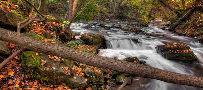 Fall is a wonderful time to enjoy shopping, dining, and the wonderful sights in Quakertown, Bucks County PA