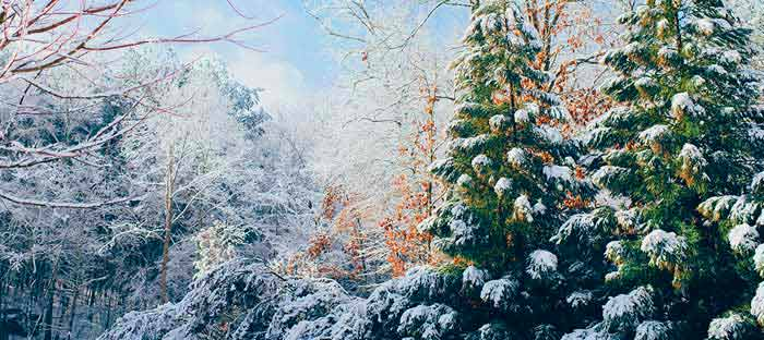Winter is a wonderful time to enjoy shopping, dining, and the wonderful sights in Quakertown, Bucks County PA