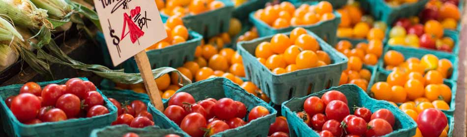 Farmers Markets, Farm Fresh Produce, Baked Goods, Honey in the Quakertown, Bucks County PA area